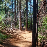 Alan Thiesen Trail