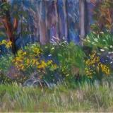 Margaret Brown - Yuba Rim Trail
