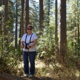 Sylvia - Hardrock Trail