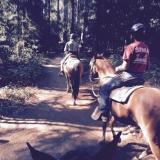 Trabucco's - Osborne Hill Trails