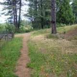 Narrow Gauge Trail