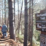 Rambler Trail