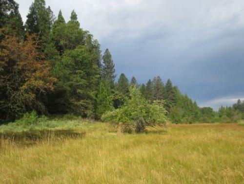 bennett conservation easement