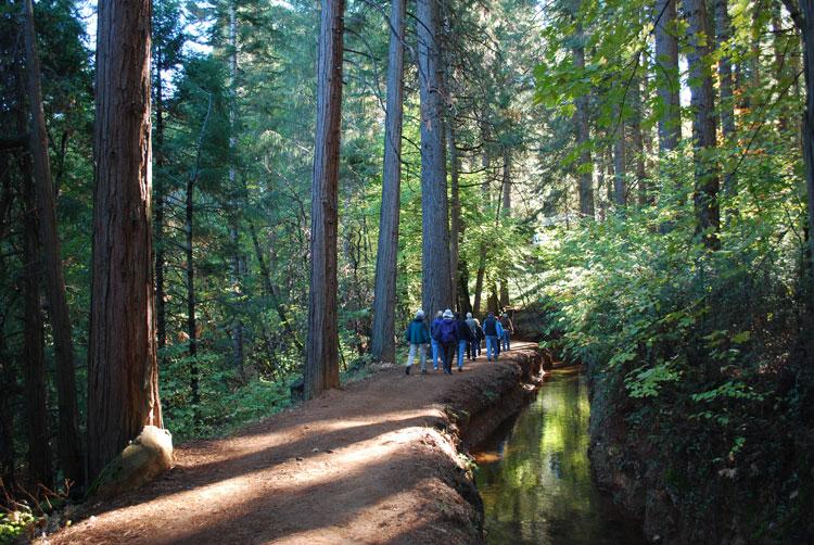 trails improve health