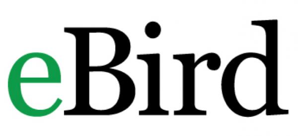 ebird-logo