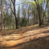 Alan Thiesen Trail