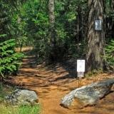 Cascade Canal Trail