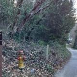 Deer Creek Environs Trail