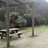 Hoyt Trail