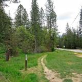 Loma Rica Trail