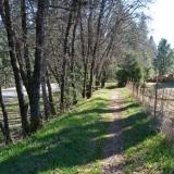 Narrow Gauge Trail