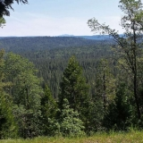 Nevada City Airport Trails