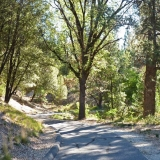 Nevada County Government Center Trails
