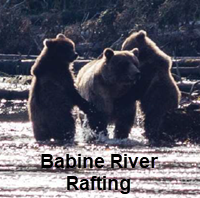 Babine River of Grizzlies rafting