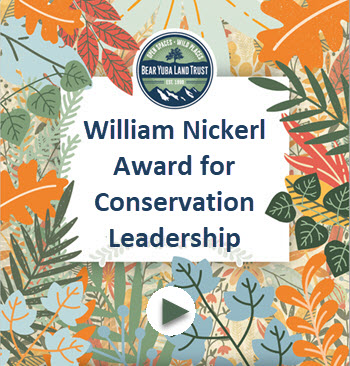 William Nickerl Award