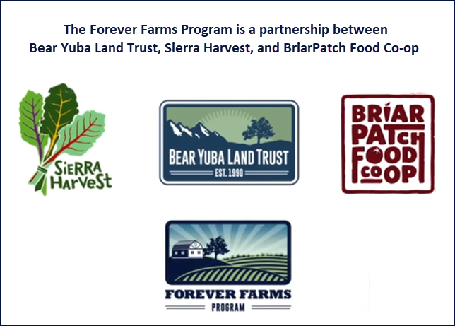 The Forever Farms Program is a partnership between Bear Yuba Land Trust, Sierra Harvest, and BriarPatch Food Co-op.