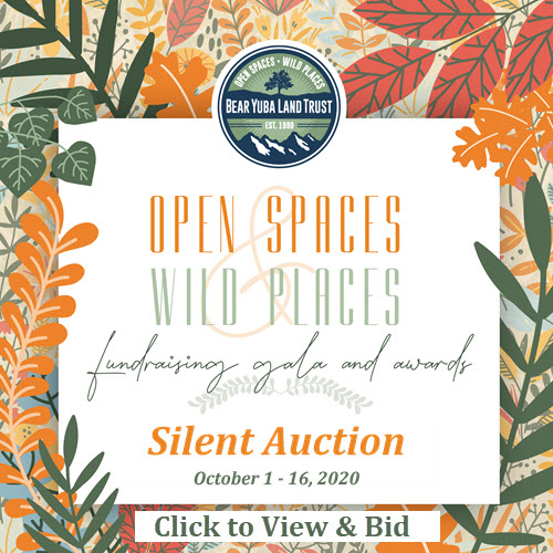 2020 Gala SIlent Auction - Click to view and bid